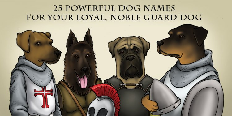 30 Powerful Dog Names for Your
