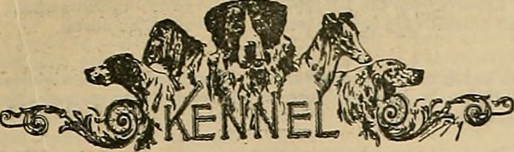 Image from page 28 of Breeder and sportsman (1882
