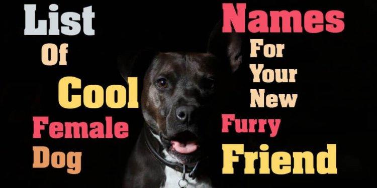 List Of Cool Female Dog Names