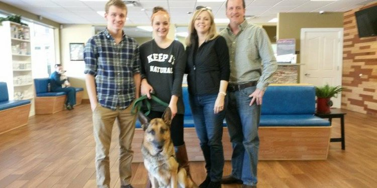 PTSD Trained German Shepherd