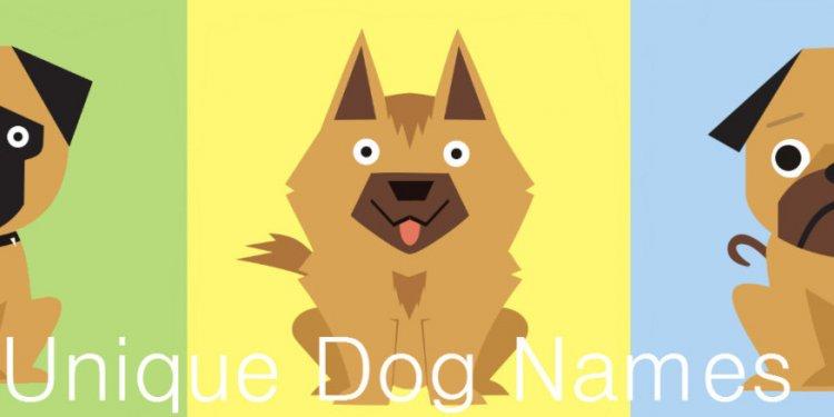 Unique Dog Names