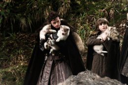 Robb, Bran and their wolves
